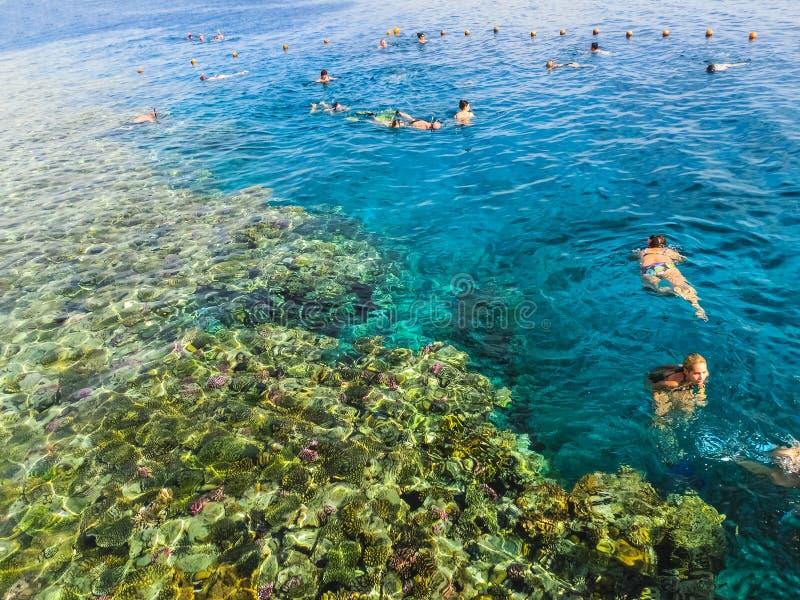 Sharm el-Sheikh, Egitto - 31 dicembre 2018: La gente che si immerge in acque blu sopra la barriera corallina sul Mar Rosso in EL  immagini stock libere da diritti