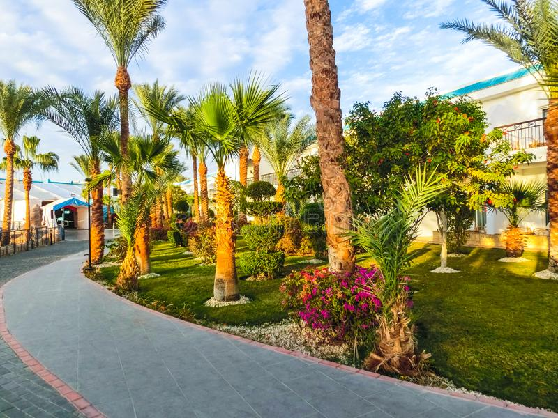Sharm El Sheikh, Egypt - December 31, 2018: Tropical luxury Sultan Gardens Resort on Red Sea beach. royalty free stock photo