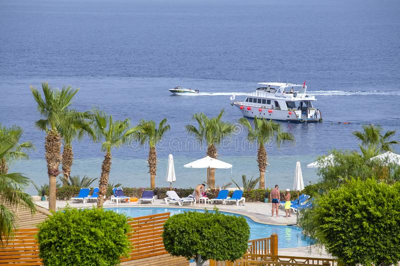 People rest in swimming pool near red sea in beach hotel, Sharm El Sheikh, Egypt stock image