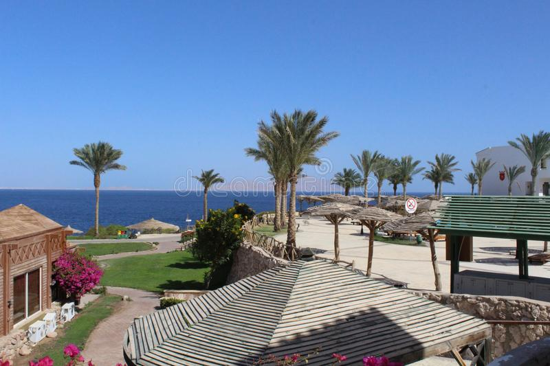 Sharm El Sheikh, Egypt, Sinai royalty free stock image