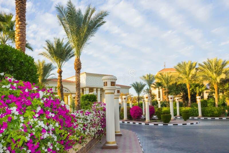 Sharm el Sheikh Egypten - Januari 05, 2019: Sultan Gardens Resort på Sharm el Sheikh royaltyfria foton