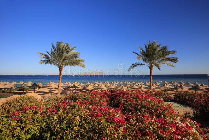 Sharm el Sheikh. Resort in Egypt royalty free stock photography