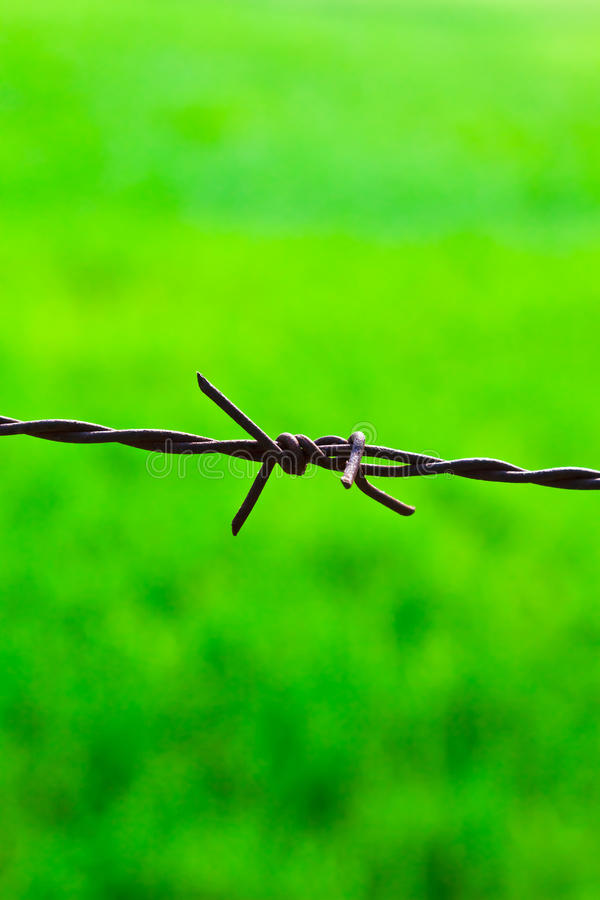 Download The sharp fence stock image. Image of field, danger, industrial - 24689707