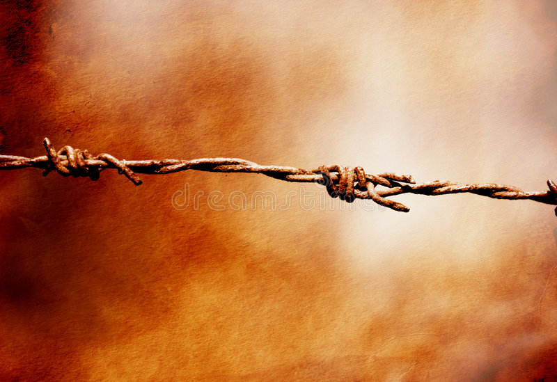 Sharp thorns. Image of barbwire sections with sharp thorns stock photos