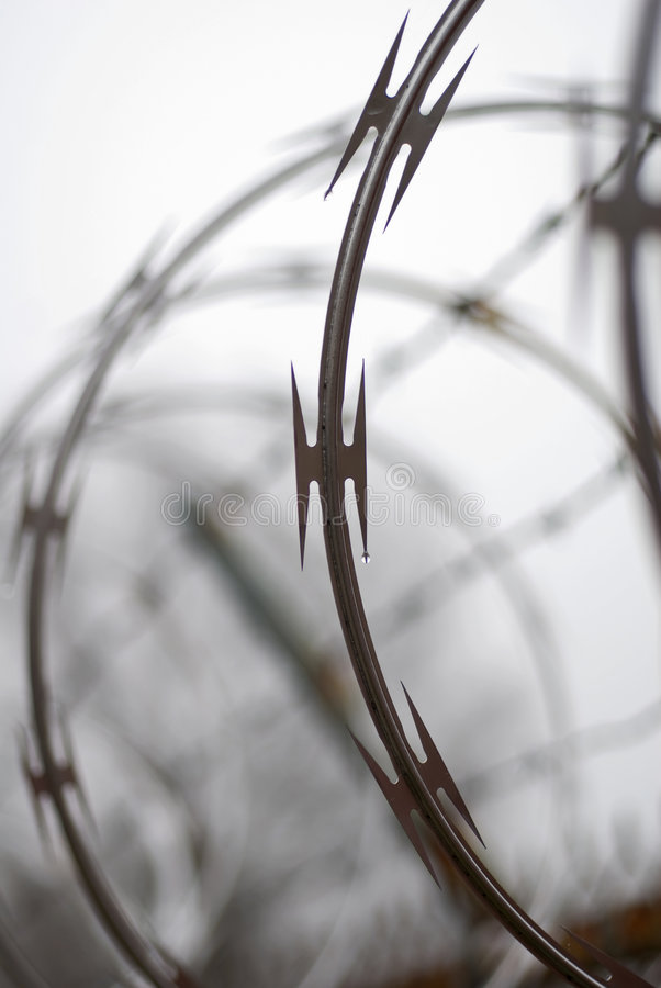 Download Sharp Wire stock image. Image of barbed, blurred, closeup - 7611507