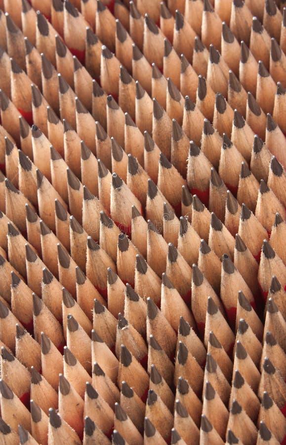Sharp wooden pencils. Top view of lots of sharp wooden pencils stock photos