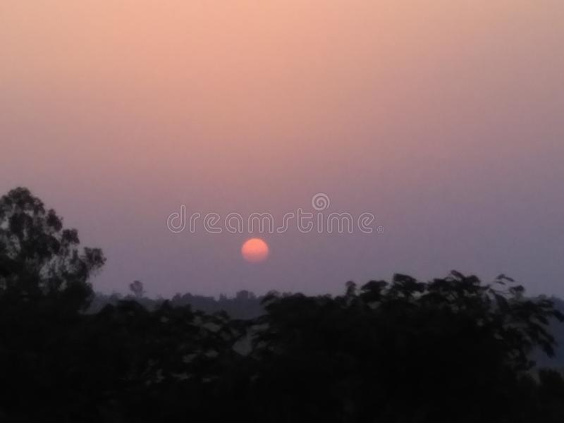 Sharpen Sunset. Very sharpen Sunset and trees is seen in the nature stock images
