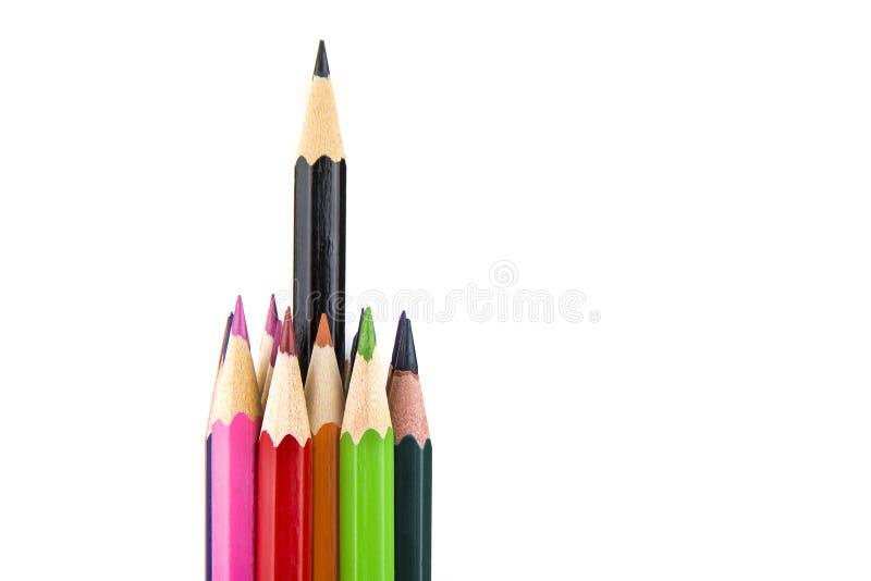 Sharpened coloriu lápis no fundo branco imagem de stock