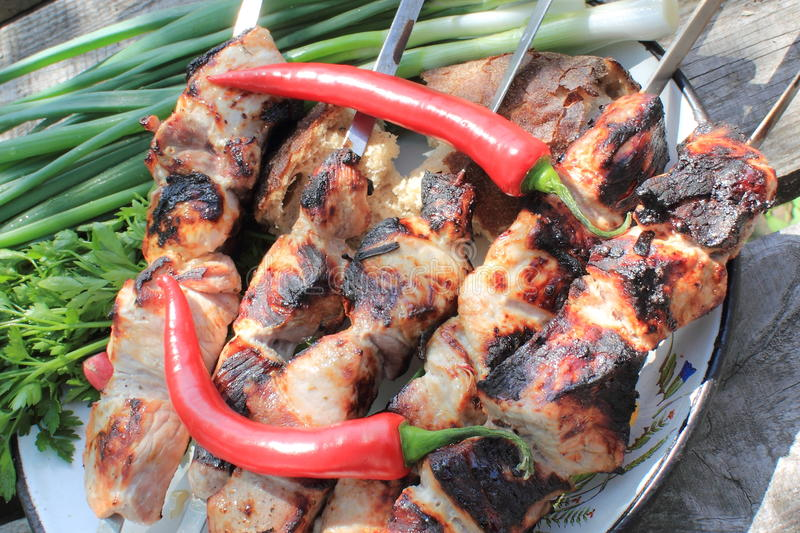 Shashlik. Hot barbecue and hot red chilli pepper stock photos