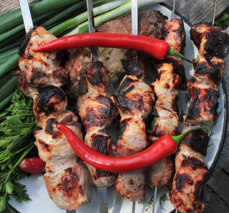 Shashlik. Hot barbecue and hot red chilli pepper royalty free stock photos