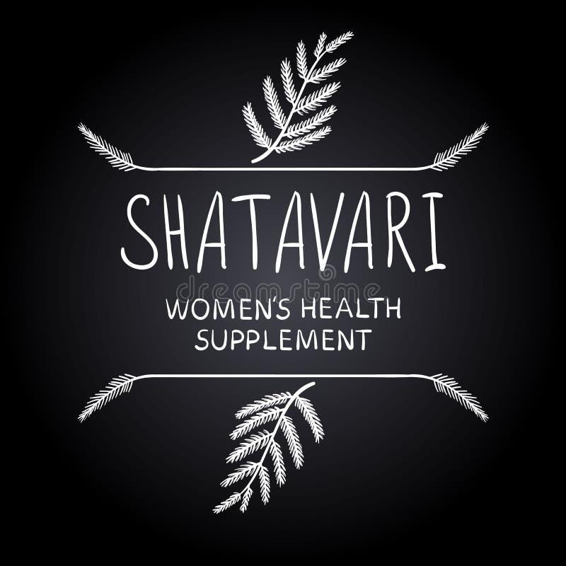 ` Shatavari: Frauen ` s Gesundheitsergänzung ` Buchstaben mit Hand gezeichneten Grenzen, Kreidezeichnungen lizenzfreie abbildung