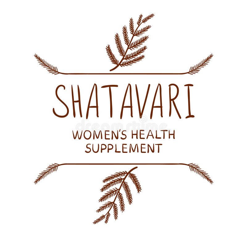 `Shatavari: women`s health supplement` VECTOR letters with drawn borders, brown on white. `Shatavari: women`s health supplement` handwritten VECTOR letters with royalty free illustration