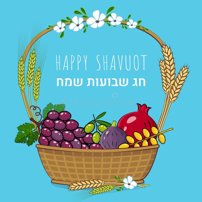 Shavuot Jewish holiday concept with fruit basket Vector illustration. Happy Shavuot in Hebrew stock illustration
