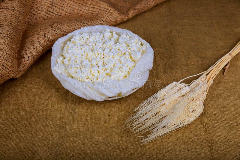 Shavuot kosher γάλα γαλακτοκομικών προϊόντων τροφίμων φρέσκο, σίτος τυριών εξοχικών σπιτιών στοκ εικόνες