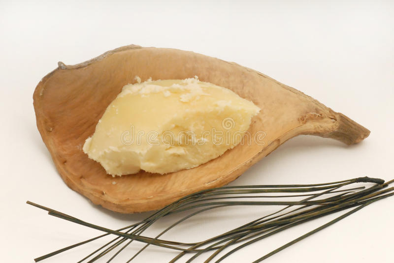 Shea butter royalty free stock photography
