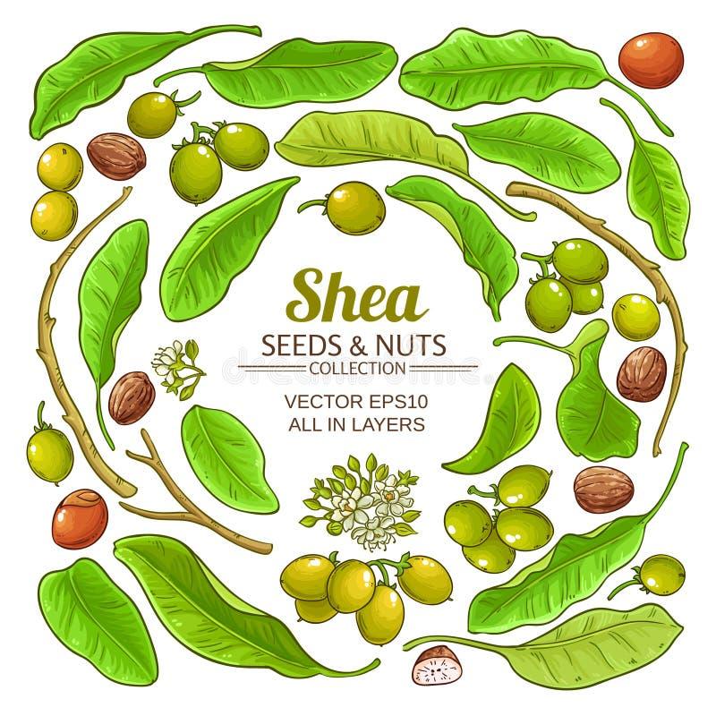 Shea elements vector set. On white background royalty free illustration