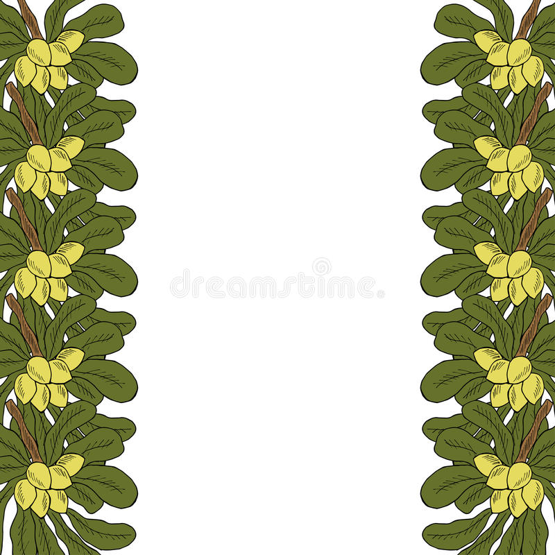 Shea tree, liner, in color, border vector illustration
