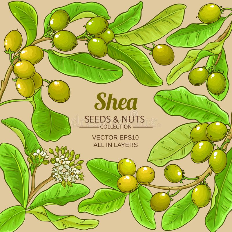 Shea-Vektorrahmen stock abbildung