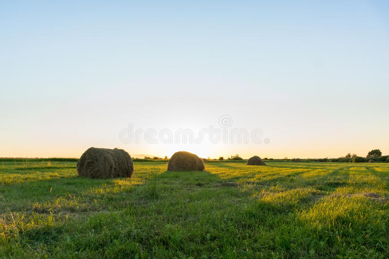 Sheaf of hay on the field at sunset. Tambov region, summer, sunset, evening stock photo