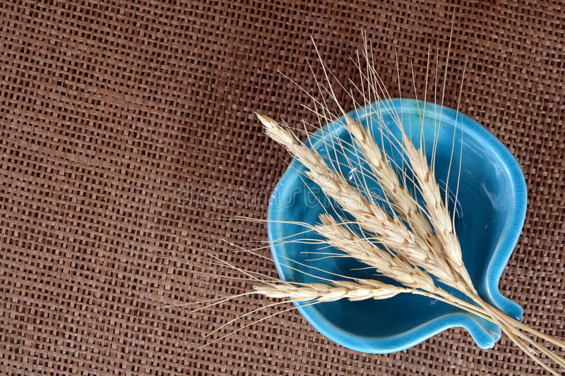 Sheaf of wheat. In bowl on burlap background stock images