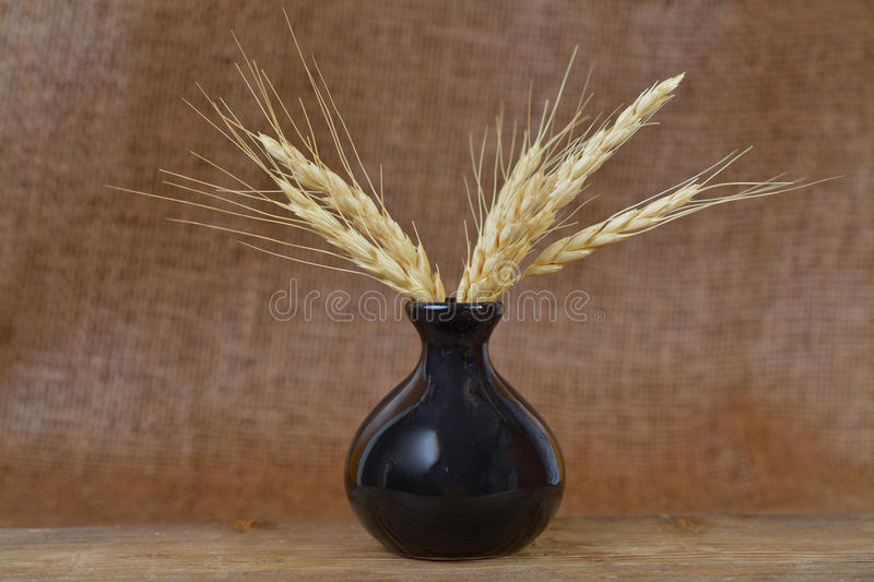 Sheaf of wheat. In pot on burlap background royalty free stock photo