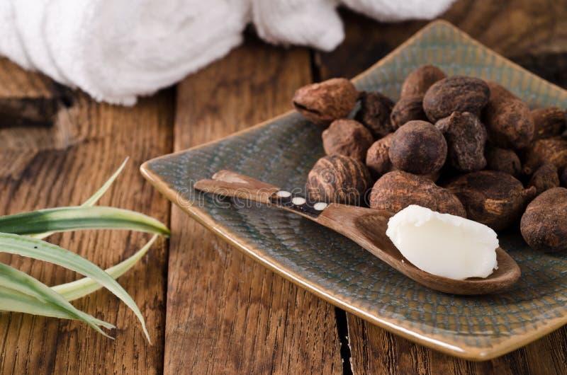 Sheanuts et beurre image stock