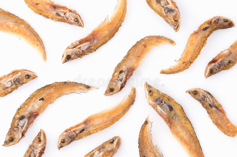 Sheatfish fried royalty free stock photo
