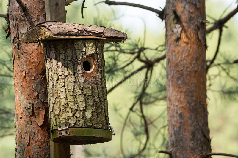 Shed for birds royalty free stock image