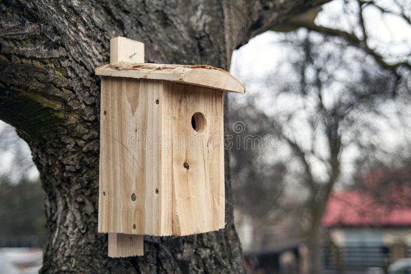Shed for birds on trees. Wooden birdhouse on the tree stock photo