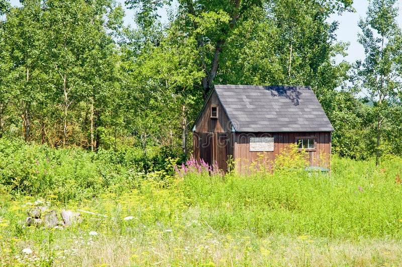 Download Shed on edge of woods stock image. Image of rural, edge - 5951957