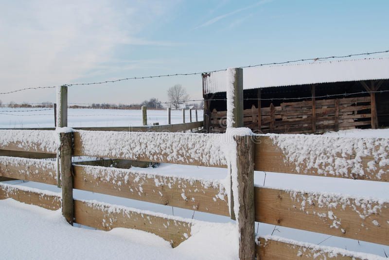 Download Shed And Fence Covered In Snow Stock Photo - Image: 12322080