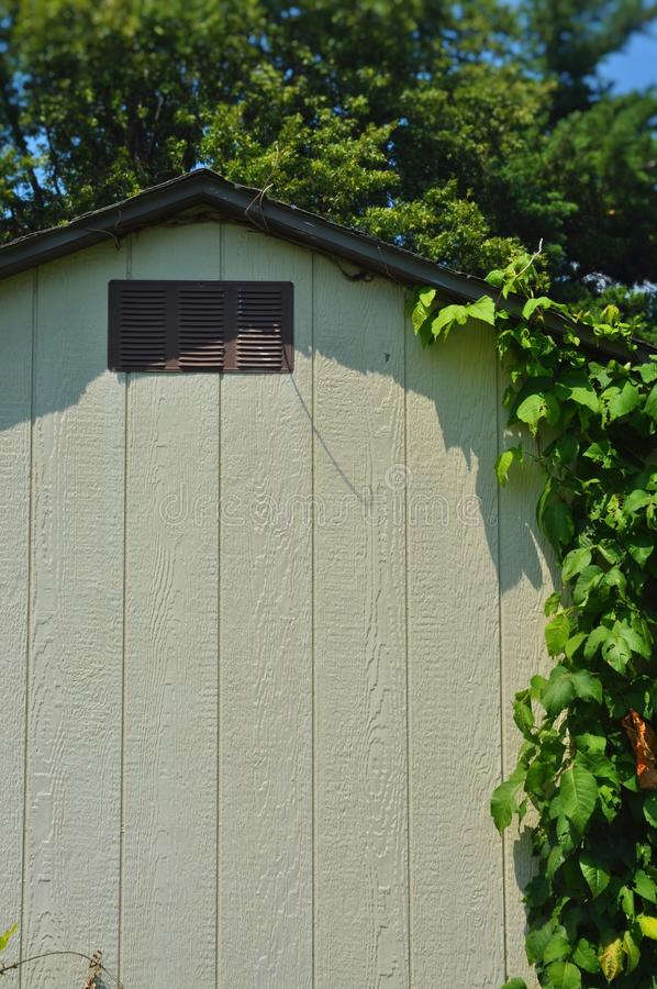 Shed with Vines stock photos