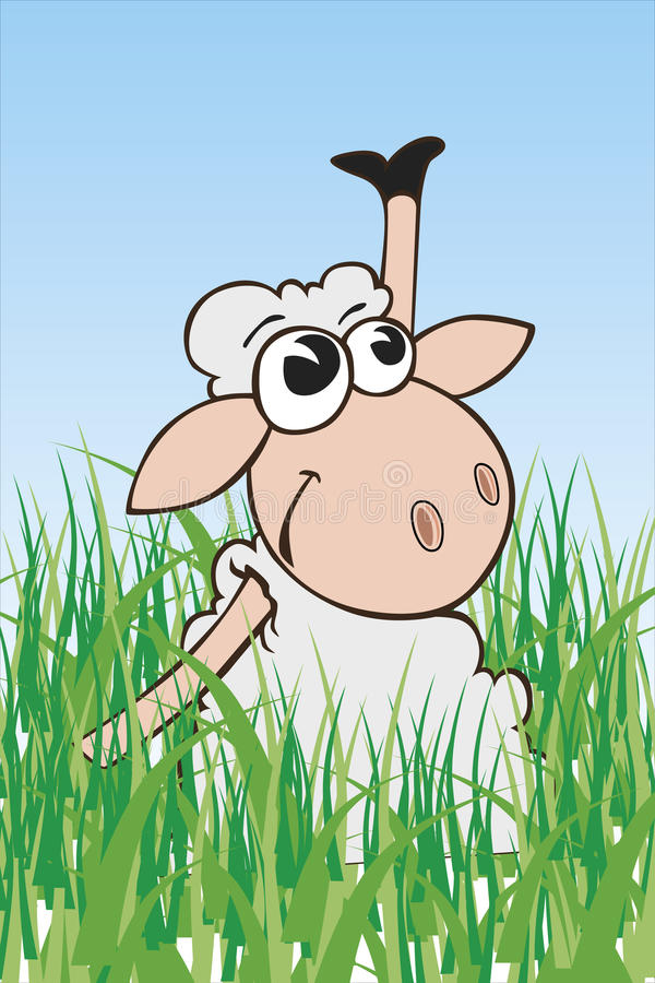 Download Sheep Stock Photography - Image: 23129032