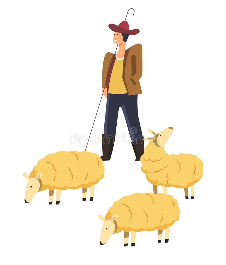 Sheep animals domestic pets and smiling shepherd vector. Sheep animals domestic pets and smiling shepherd controlling mammals vector. Creatures giving wool and vector illustration
