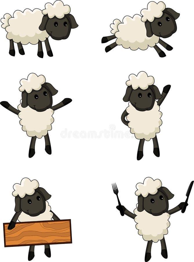 Sheep cartoon character vector illustration
