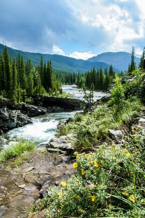 Sheep Creek Falls stock image