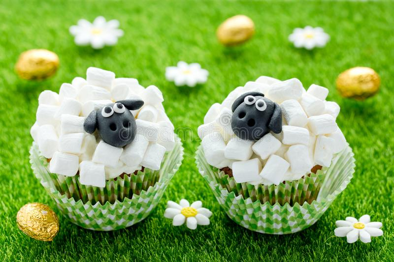 Sheep cupcakes , lamb cupcakes , adorable Easter cupcakes decorated with white marshmallow and black fondant royalty free stock image
