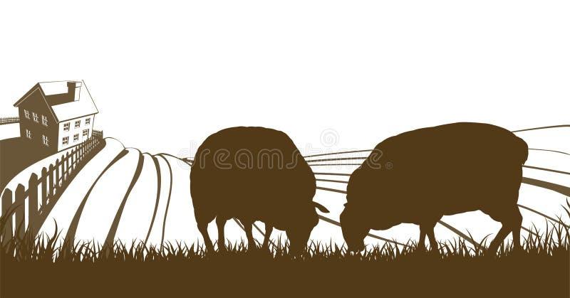 Sheep Farm Rolling Hills Landscape stock illustration