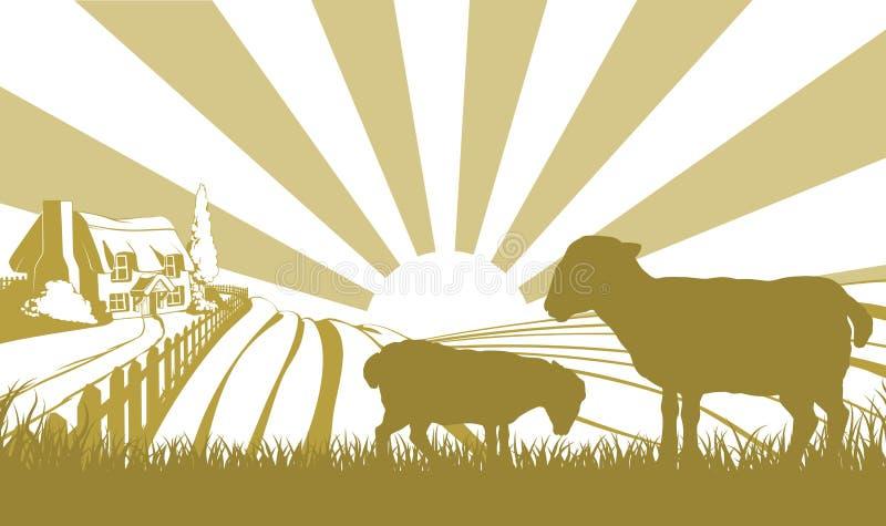 Sheep farm scene stock illustration