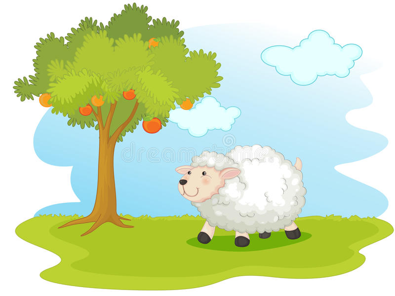 Sheep field stock illustration