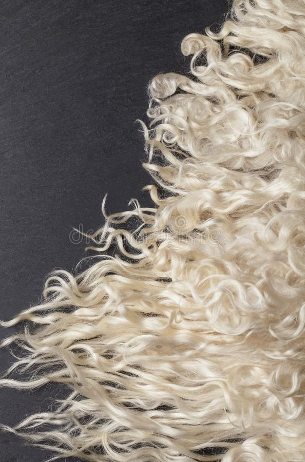 Sheep fur. Wool texture. royalty free stock images