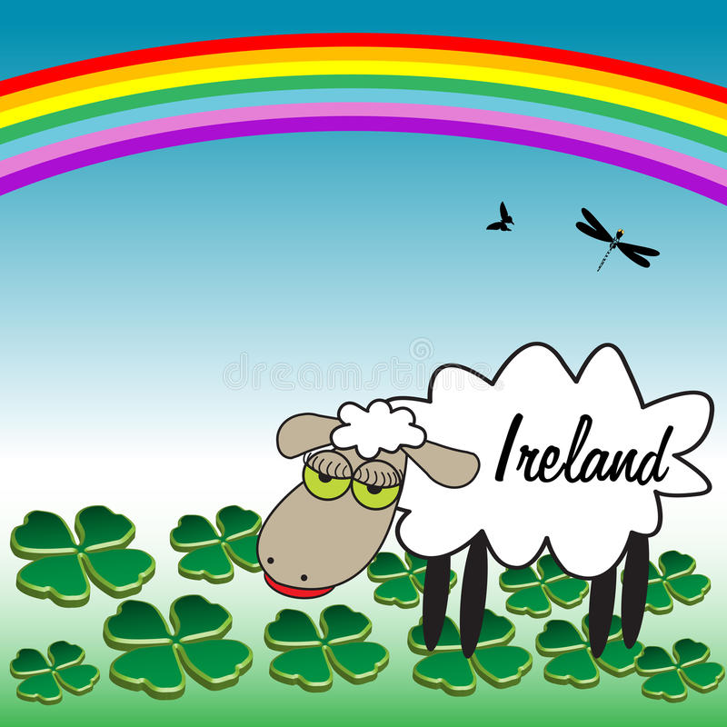 A sheep from Ireland stock photography
