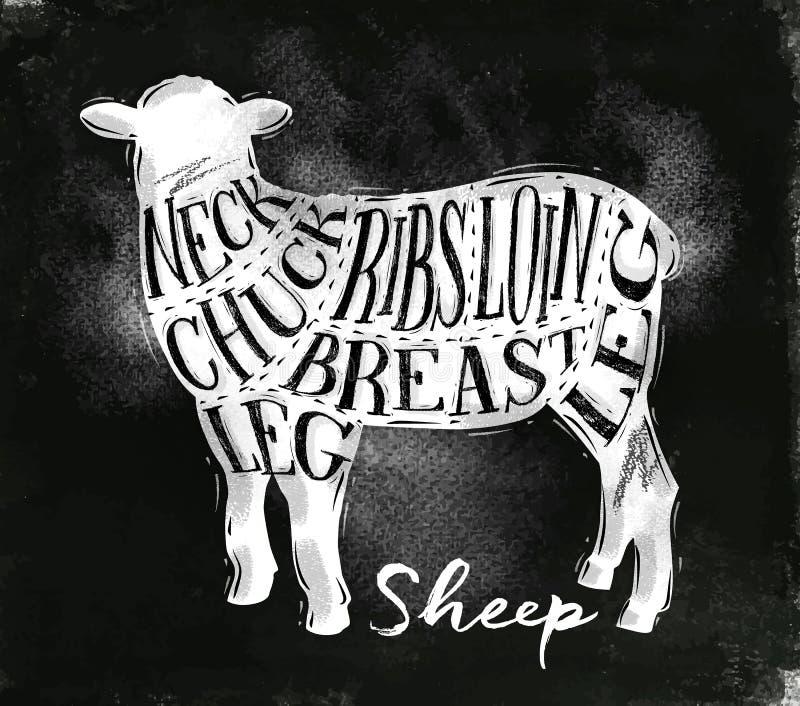 Sheep lamb cutting scheme chalk stock illustration