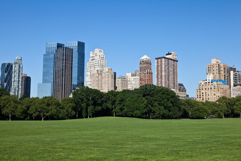 Download Sheep Meadow stock image. Image of summer, grass, park - 14536021