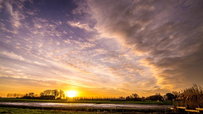 Sheep in meadow with beautiful golden winter sun on blue sky and dark clouds 2. Meadow with beautiful golden winter sun on blue sky and dark clouds trees lined royalty free stock images