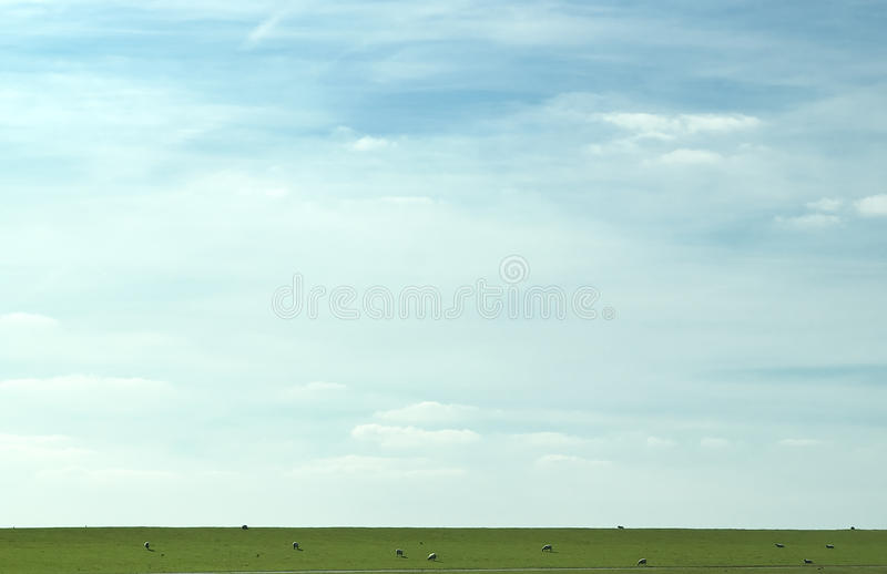 Download Sheep Minimalism Stock Photography - Image: 11073172