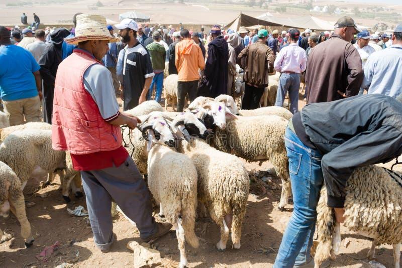 Sheep open-air market in Morocco stock photo