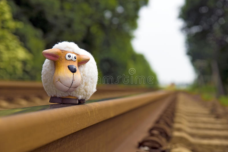 Download Sheep on rails stock photo. Image of blur, rails, background - 12820132