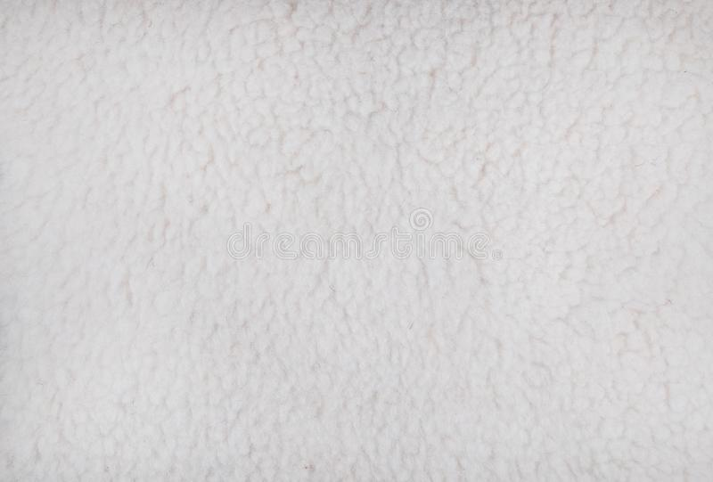 Sheep`s wool. Sheep wool texture. Sheep`s wool. White sheep wool texture close up stock images