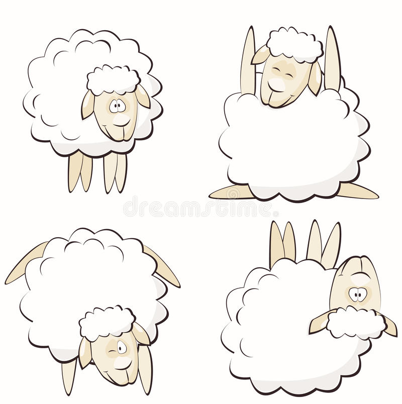 Sheep stock illustration